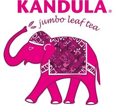 Kandula Logo